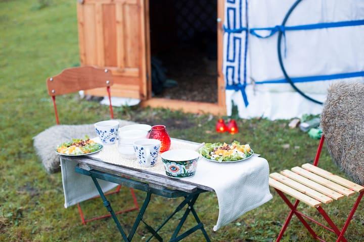 Authentieke Yurt op Bio-Boerderij de Horsterhof