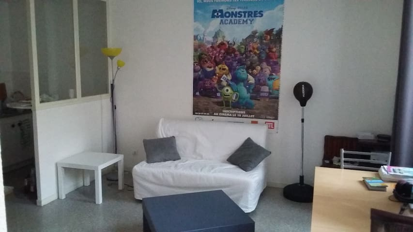 Studio 40m² à 100m de la Cathédrale - Clermont-Ferrand - Apartment