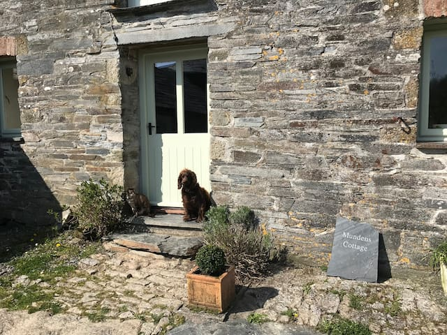 Welcome to Mundens Cottage. You are more than welcome to bring your dog.