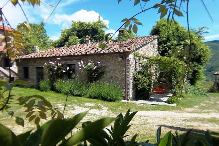 Comfy home in San Godenzo with Lake nearby