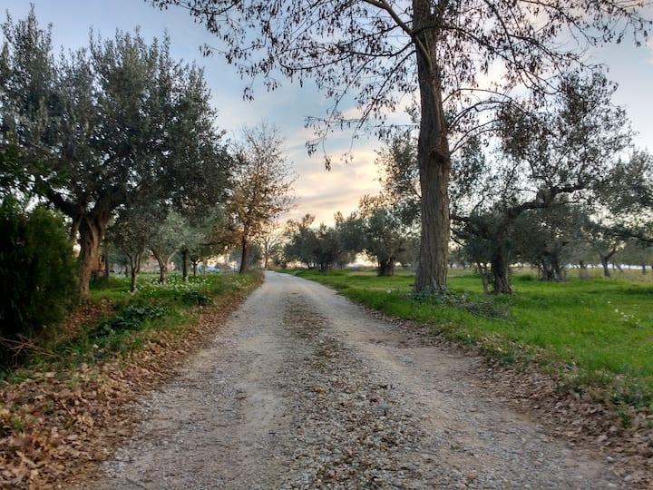 Soluzione per famiglie nella campagna Abruzzese