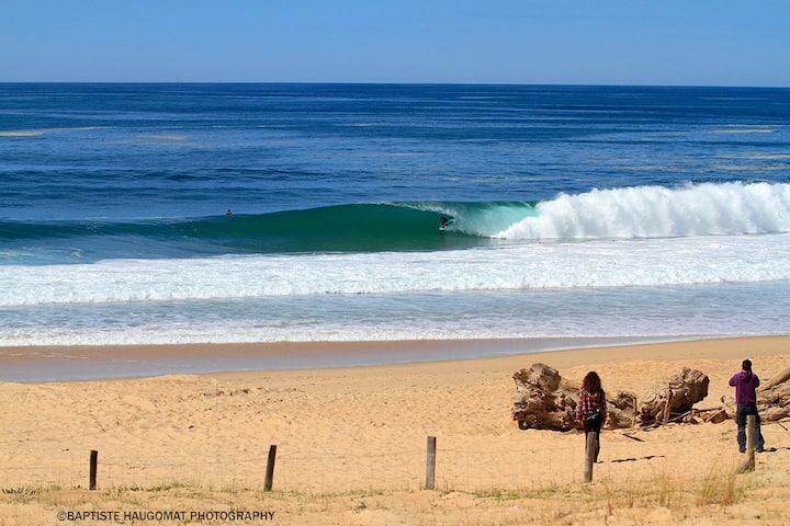 Beach surf forest Seignosse Hossegor