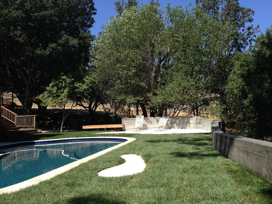 Another view of the pool area