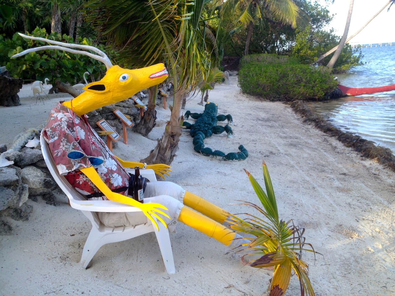 You never know who -or what?!- you might meet hanging out on the beach in Ambergris Caye .... this Driftwood Dude is one of our neighbors!