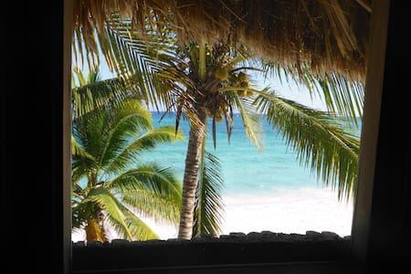 PALAPA HUT,  beach front 2 story