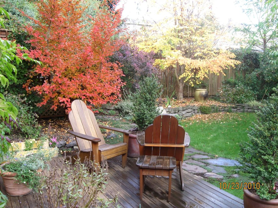 Back deck in early fall