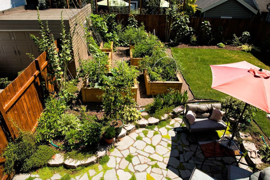 Backyard and garden sitting area