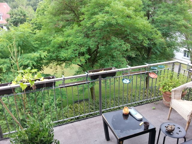 Nice Room to rent in a quiet place - Bern - Apartamento