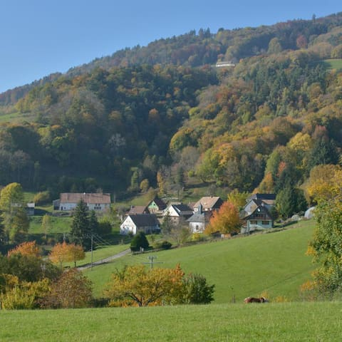 Le Hameau de Ribeaugoutte, 600m, dans la montagne vosgienne