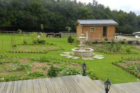 gîte rural piscine jacuzzi chevaux - Les Hogues - Almhütte