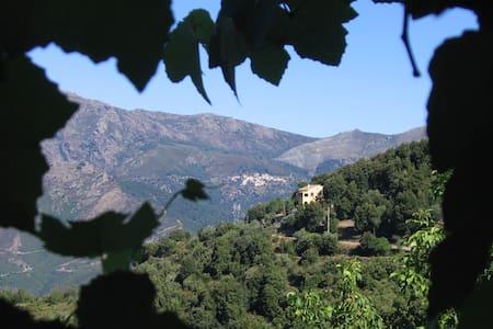 Maison typique  vue vallée du Golo - Castello-di-Rostino - Dům