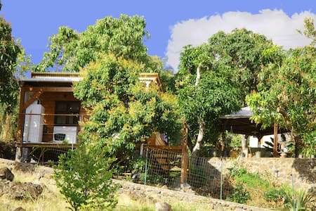 "Bungalow ""The Mango Tree"" - Saint-Leu"