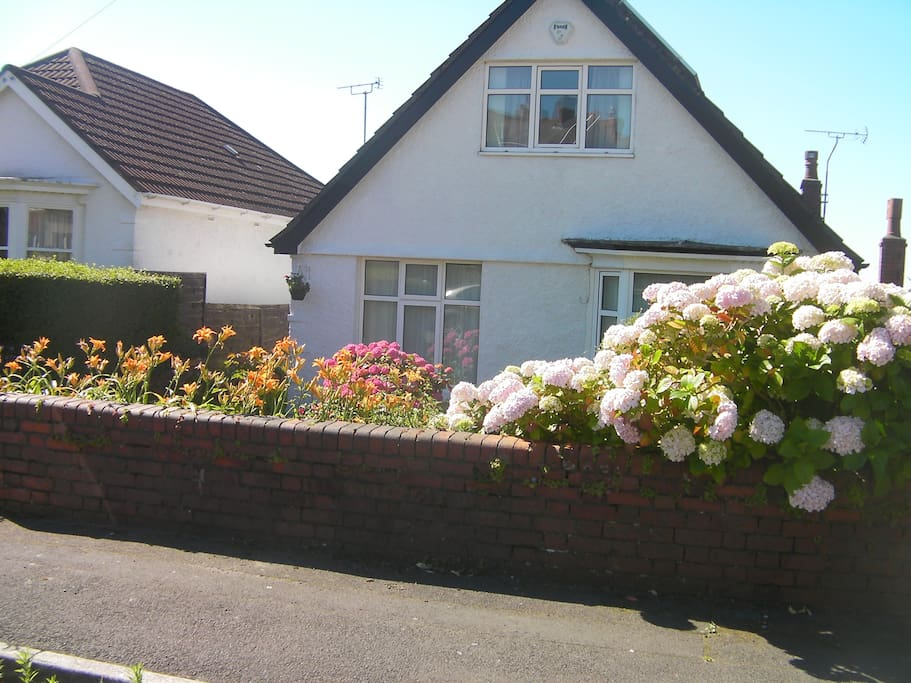 The photo shows the front view of the house on Carnglas Avenue. In summer, look for the large pink hydrangia.