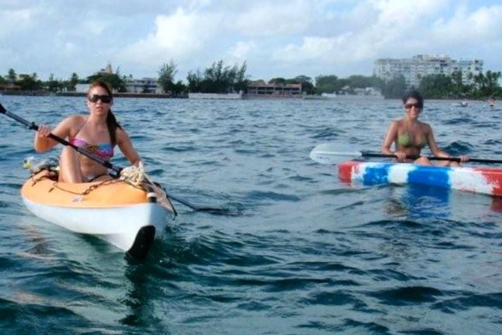 Kayaks are available to rent just a few minutes from us.