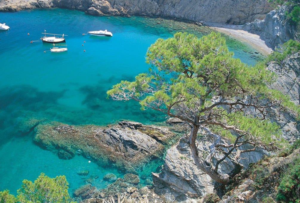 Et voici la couleur de l'eau! Baie de Sa Tuna