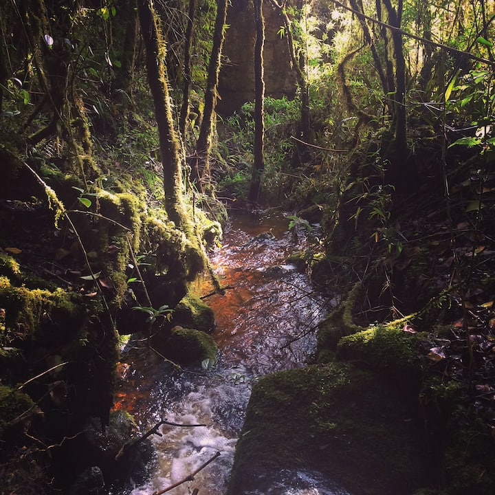 Reserva Natural Suchequincha