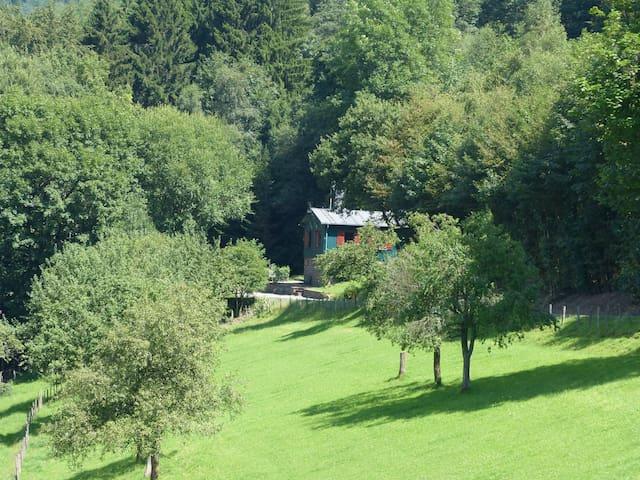 Waldhaus am Rothaarsteig - Kirchhundem - House
