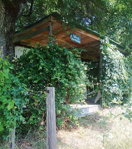 Villa Cenerentola, a caravan sourrounded by nature - Anghiari - Kamp Karavanı/Karavan