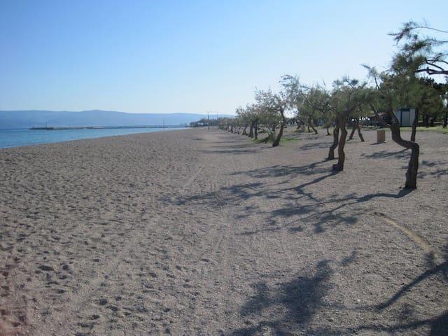 Beach Gradska plaža