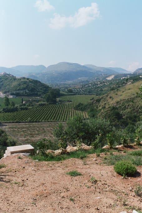 Vista sulla Valle del torrente Guidaloca