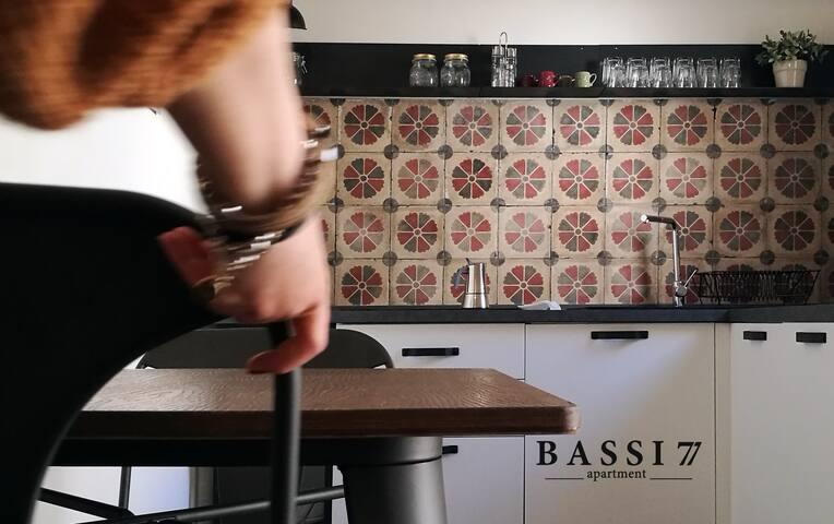Bassi 77 - apartment