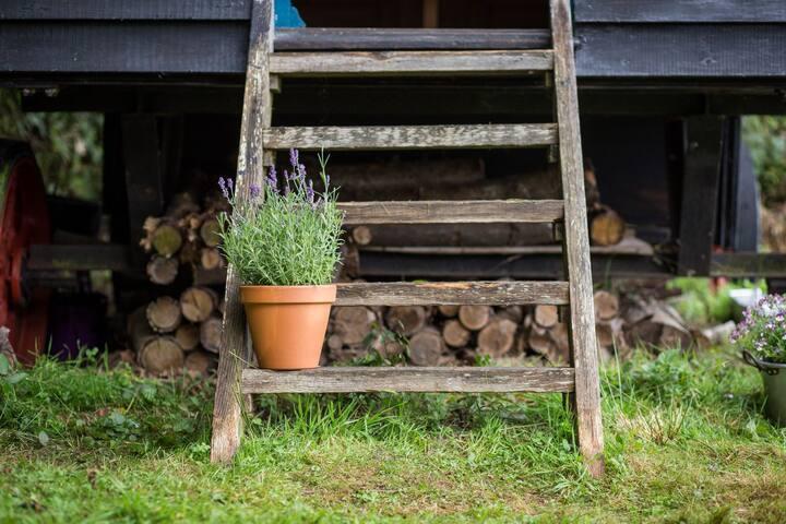 Shepherd's Hut, secluded, idyllic, National Park