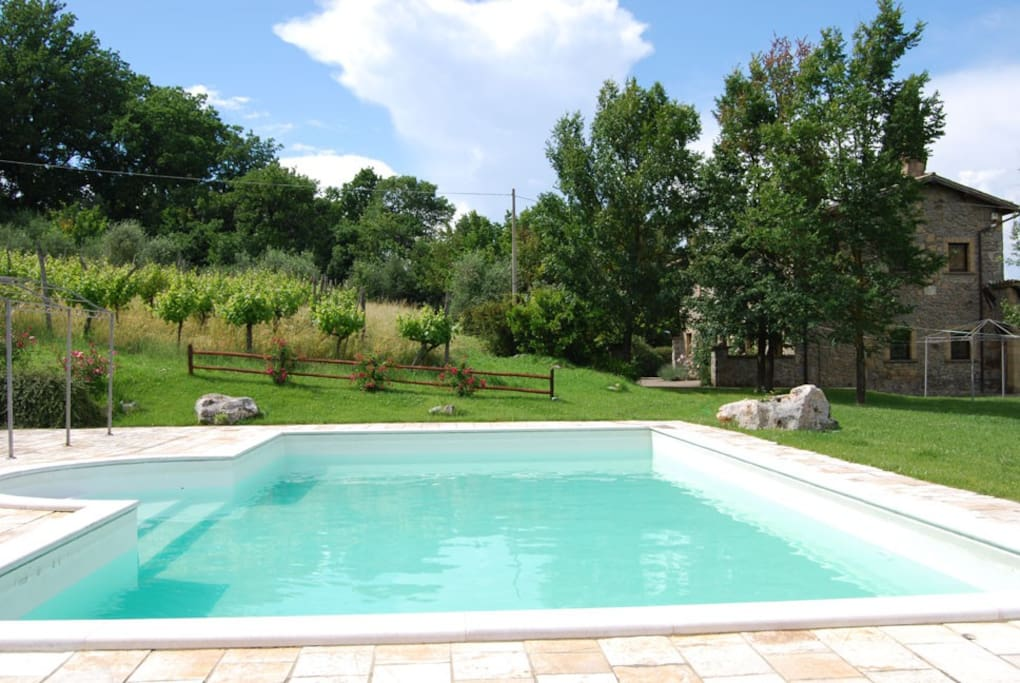 vineyard swimmingpool