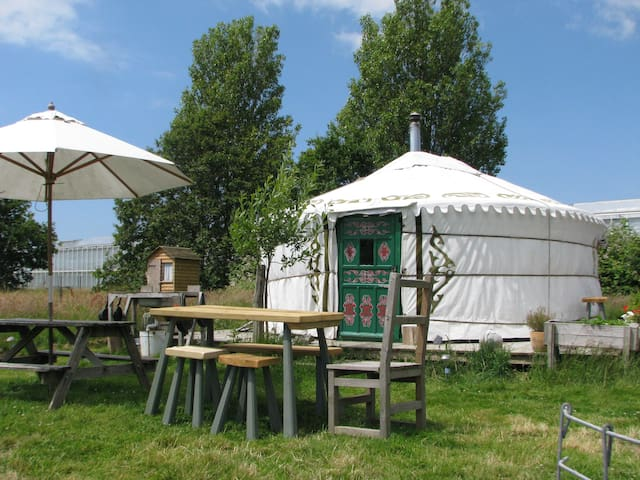 Yurt in a field,something different - Almodington - Yurta