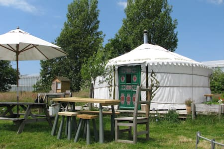 Yurt in a field,something different - Almodington