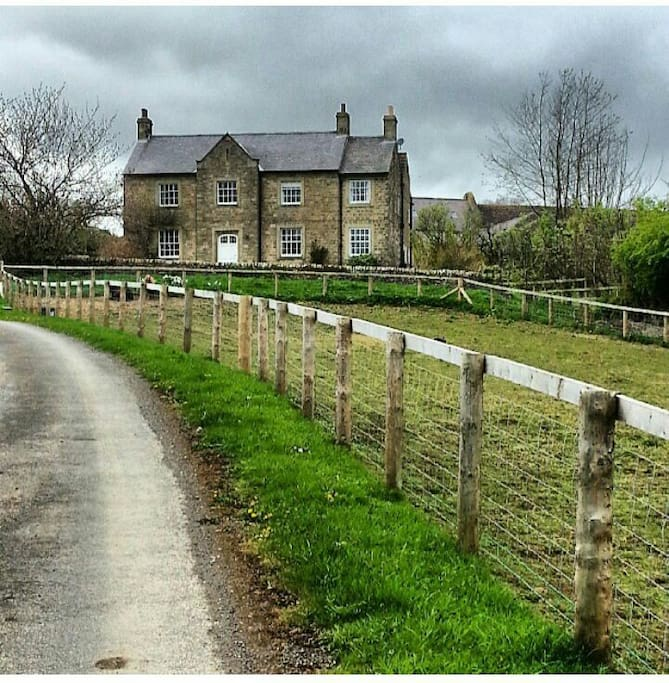 House and paddocks. Stables available during stay