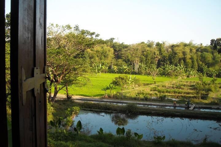Alamkita (Semilir Villa), River-Ricefields