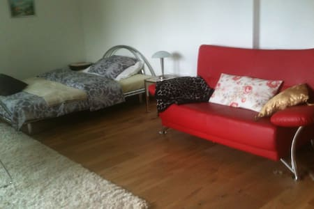 Studio furnished with sep. Entry  - Birmenstorf