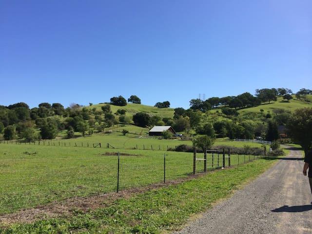 2 houses in farm 25 minutes to Napa