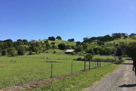 2 houses in farm 25 minutes to Napa - Talo