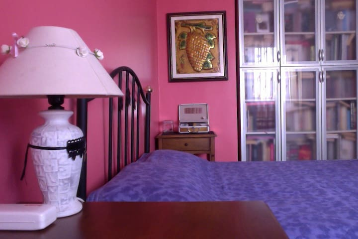 cosy room & lovely home near Taksim - İstanbul - Apartment