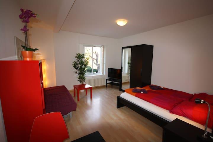 Stauffacher Apartment- Bartlett