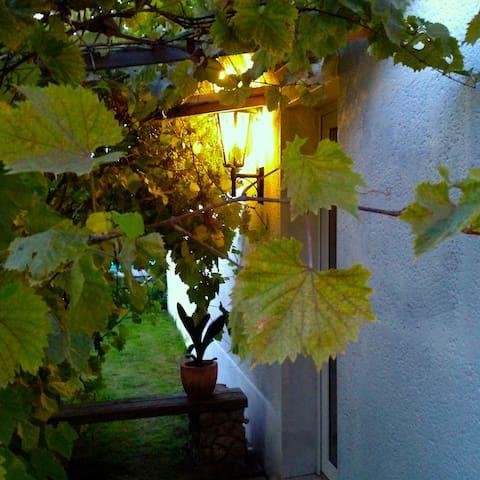 ruhig, freundlich, erholsam 2 - Leipzig - House
