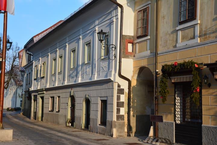 Apartment Linhartov trg