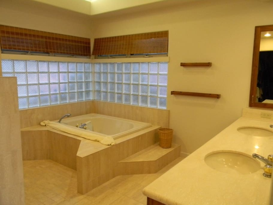 Large Walk In Shower with 2 shower heads - There is no Jacuzzi Tub