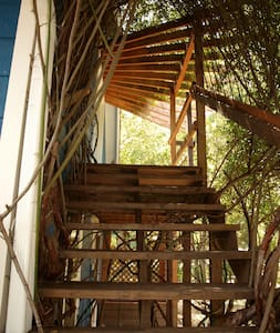Charming hideaway in South Austin