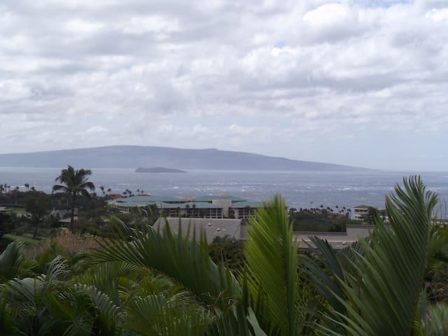 Spacious Maui (Wailea) oceanview  - Kihei - Lägenhet