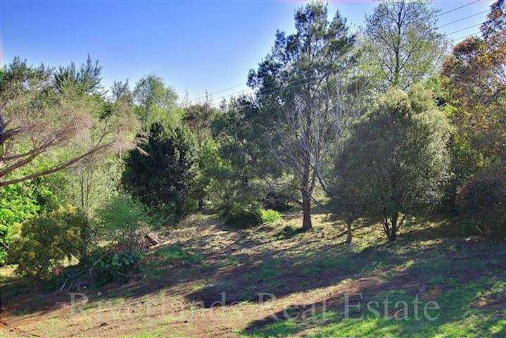 Tranquil rural escape - Rotowaro - Huis