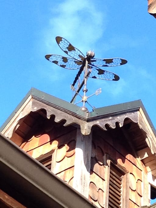 Dillon our dragonfly weathervane