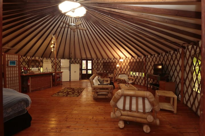 Private Eco Yurt In The Jungle - Mountain View