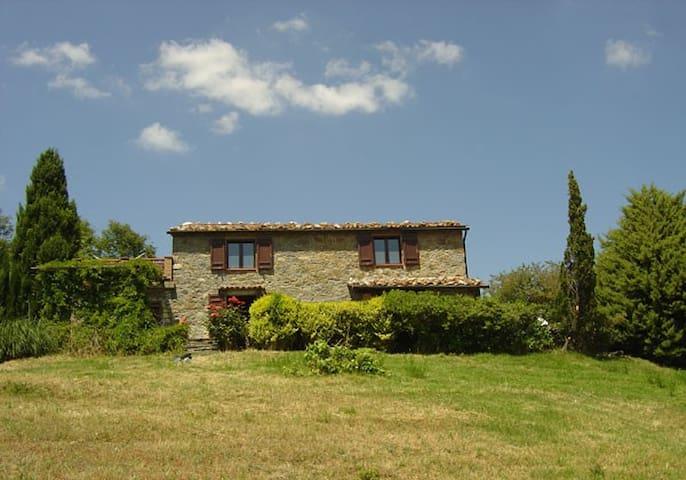 SALLICIONE - Gerfalco - House