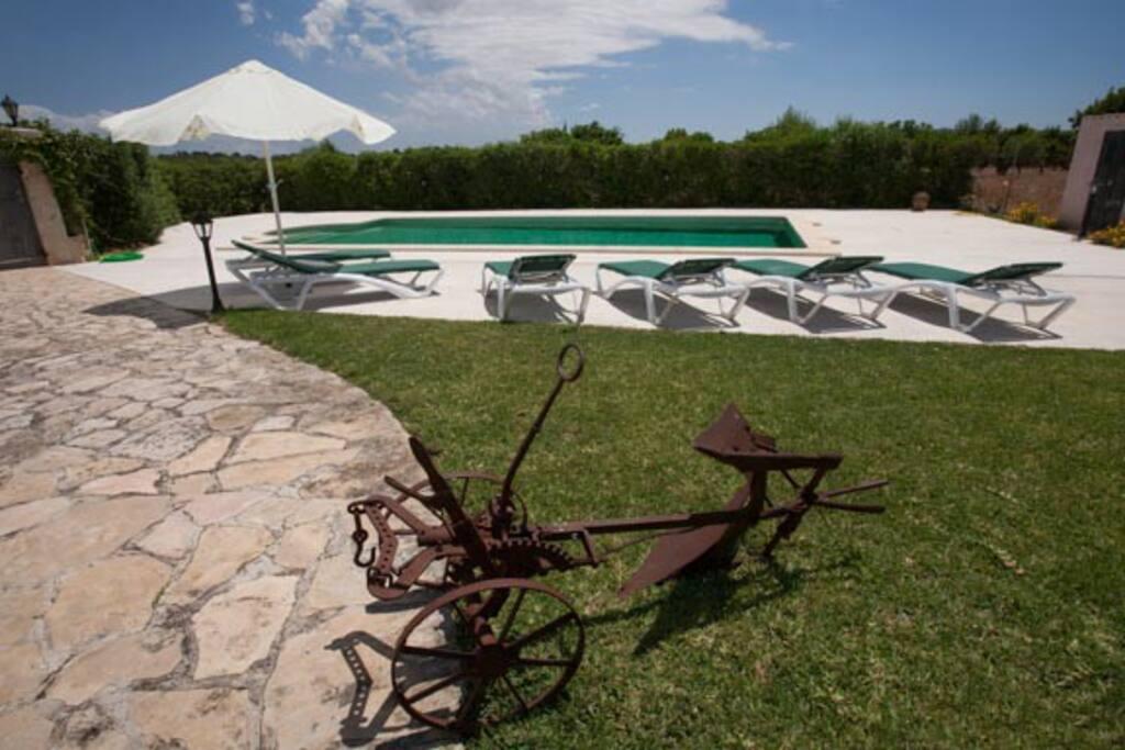 la piscina, el solárium con tumbonas y zona de césped