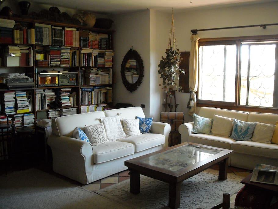 i divani del salotto