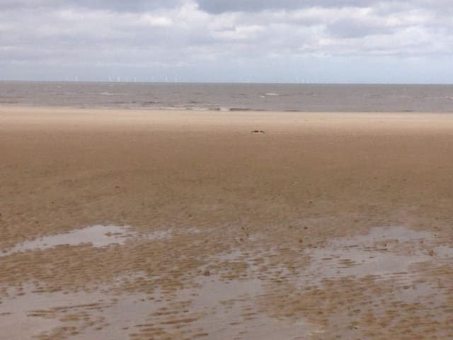 Old Hunstanton Beach (300 yds)
