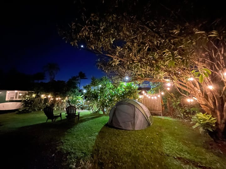 Camp Under the Stars in the Maui Jungle!