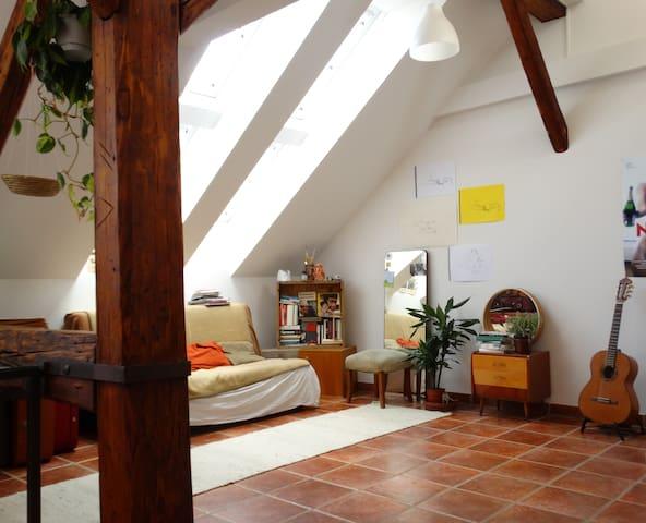 Sunny loft-Hostel at the Grazer Opera